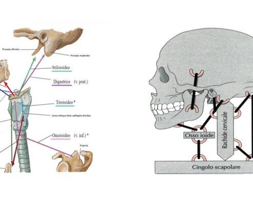 Trattamento osteopatico per l'acufene
